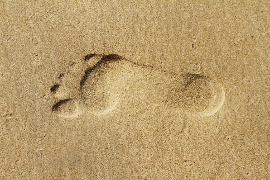 beach sand desert dry
